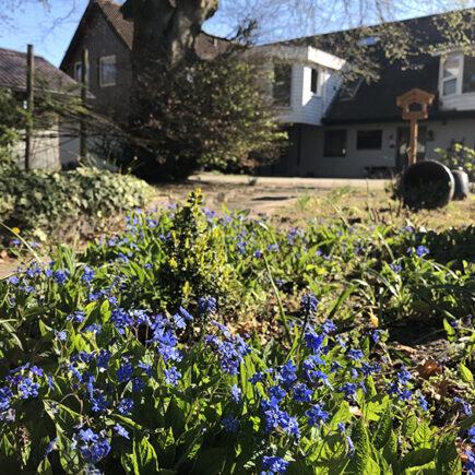 tuin stilbjerg met accomodatie
